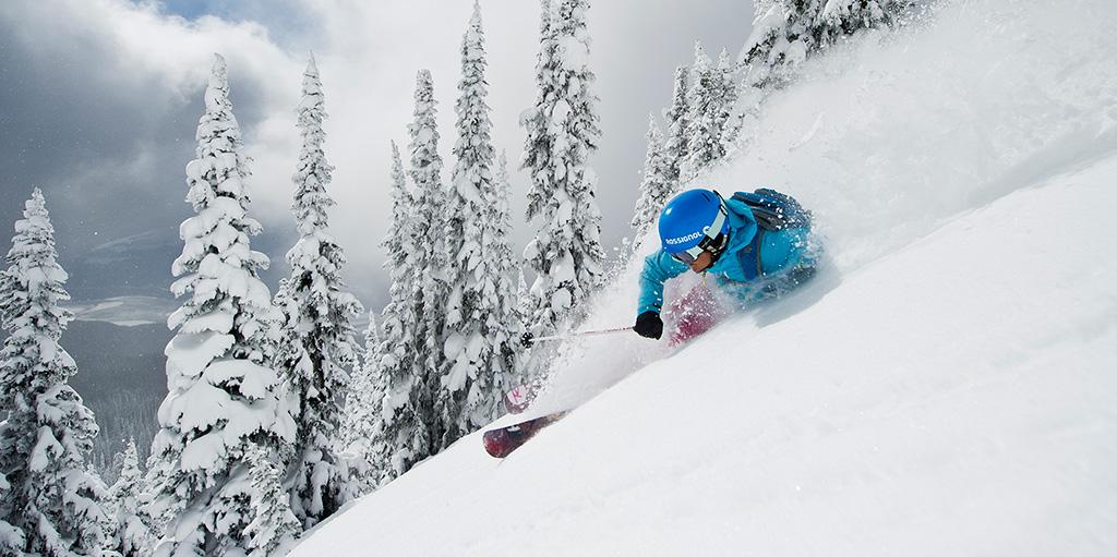 Alt image ski