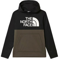 THE NORTH FACE B SURGENT P/O BLOCK NEW TAUPE GR 21